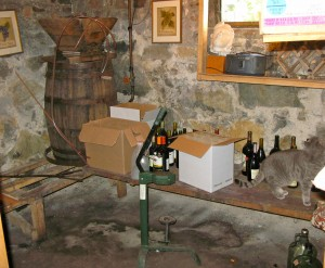 The inside of the RootsLiving wine room.